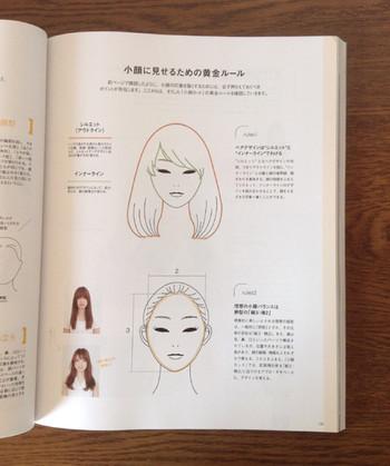 Hairmode1510